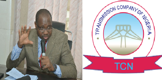 """It Was A Propaganda, FG Cannot Provide Free Power Supply"" – Usman, TCN Director"