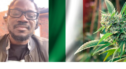 "True-Talk Or Nonsense? ""Government Should Legalise Marijuana"" -Daddy Showkey"