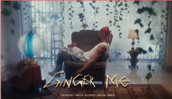 Music Video: Rema – Ginger Me    Download Mp4