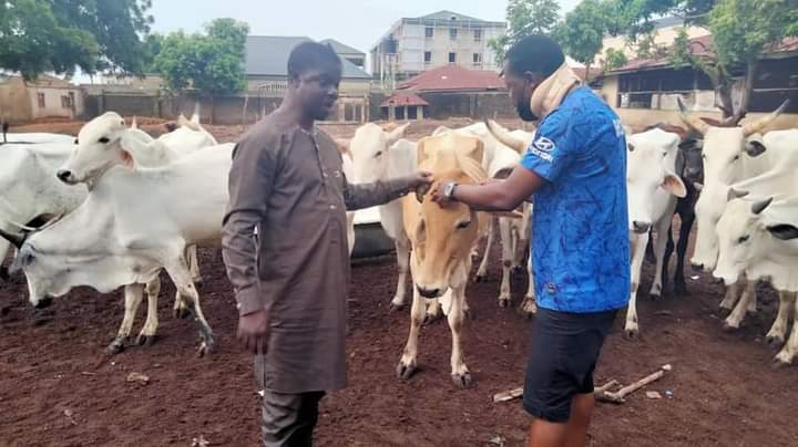 Open Grazing: 'I'm A Herdsman But I Ranch My Cattle' – Benue University Lecturer Reveals (Photo)