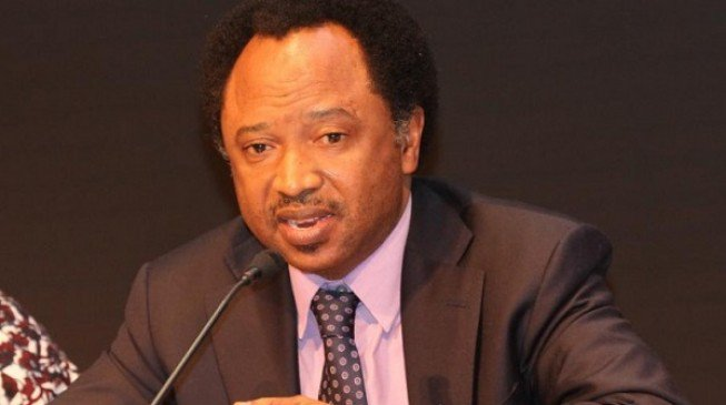 Shehu Sani: Security Chiefs Building Personal Businesses With Arms Funds