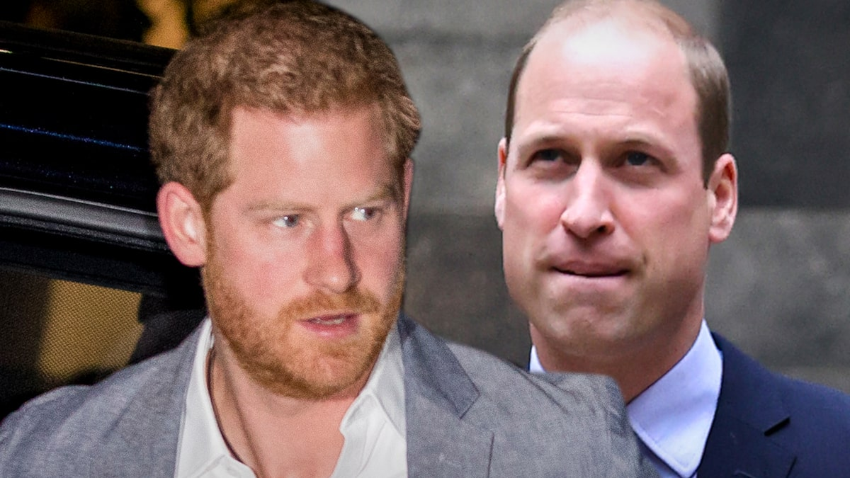 Princes William and Harry's Rift Upends Plan for Princess Diana Tribute