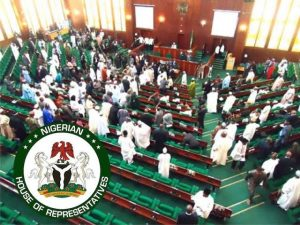 Reps' Bill Seeks 10-Year-Jail Sentence For Disclosure Of Security Agents' ID