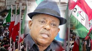 Courts Take Centre Stage In PDP Leadership Crisis