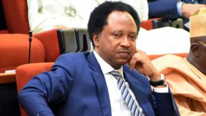 BBNaija: 'It's Unfair, I Won't Eat For One Day' – Shehu Sani Reacts To Maria's Eviction