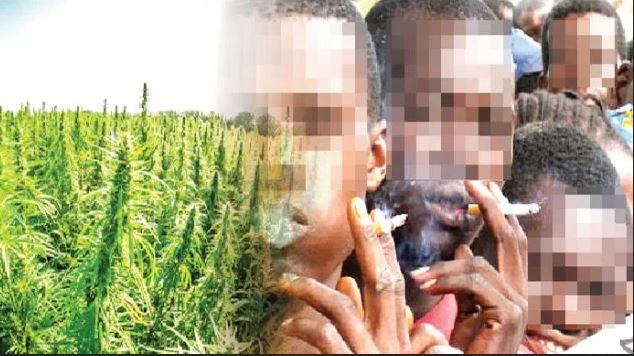 How To Spot Drug Abuse In Children, According To NDLEA