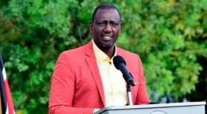 Ruto: I have 200,000 chickens and make 1.5m a day selling eggs.