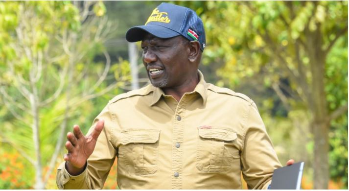 DP Ruto Reveals Business That Earns Him 1.5 Million A day Hours After CS Matiang'i Expose