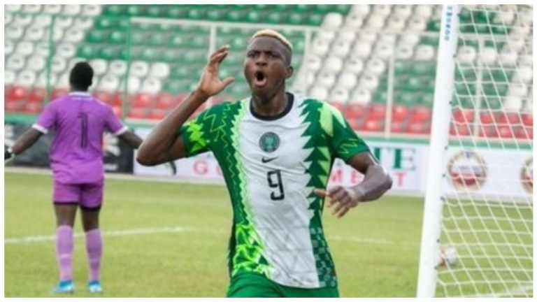 Why Osimhen Will Become Super Eagles Goal Machine -Rohr